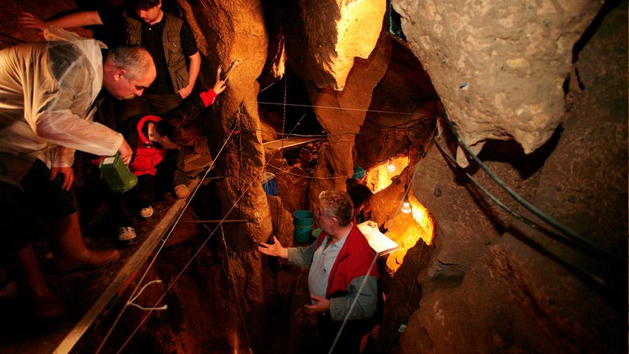 Logran extraer ADN humano en una cueva sin huesos
