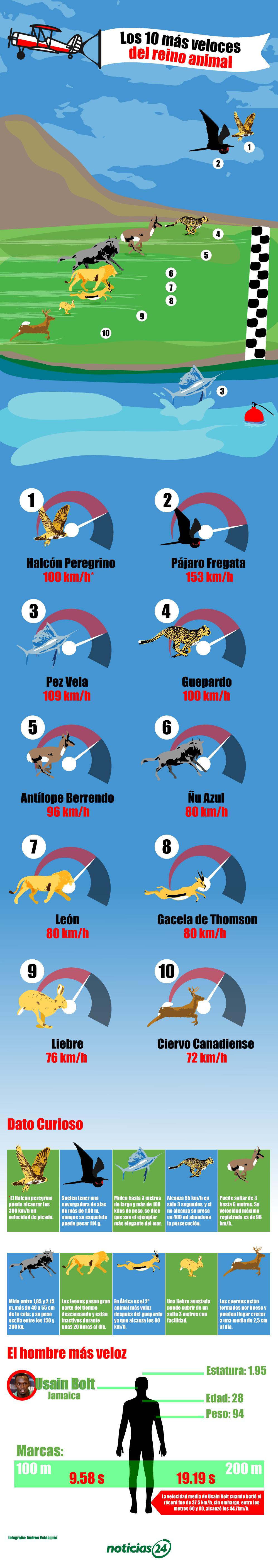 02-04-17-Los-10-mas-veloces-del-reino-animal