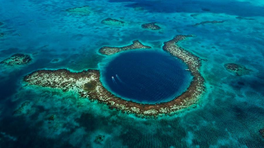 Océano Pacífico: detectan vida a 11 kilómetros de profundidad