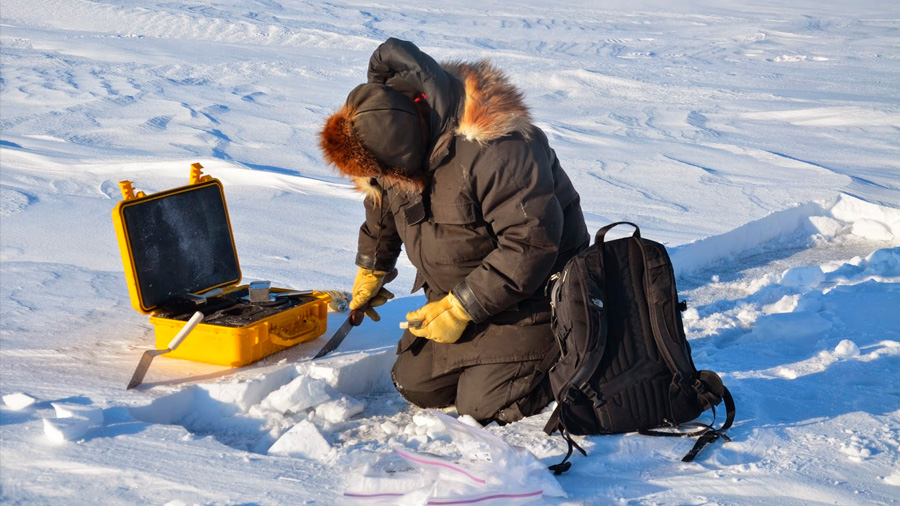 """El cambio climático podría liberar bacterias que se encuentren """"durmiendo"""" en el Ártico"""