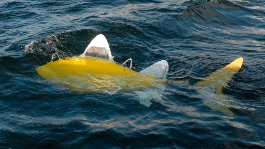 Robots con forma de pez vigilan la calidad del agua de las piscifactorías