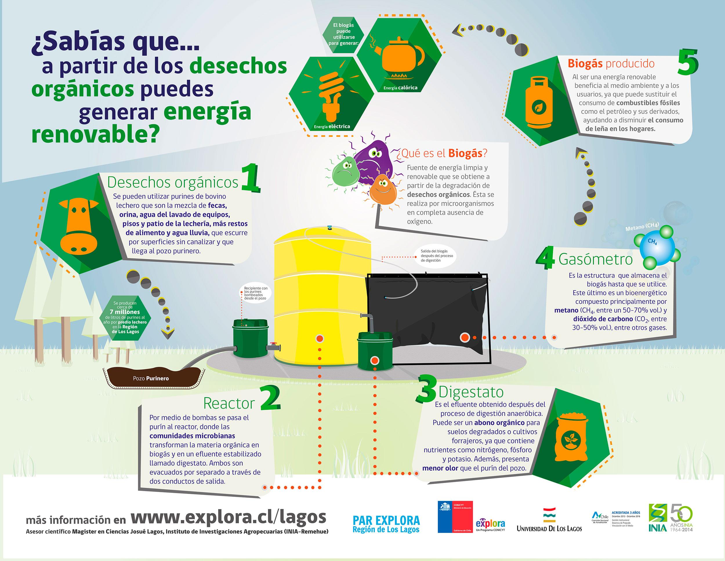 ¿Sabías que a partir de los desechos orgánicos puedes generar energía renovable?