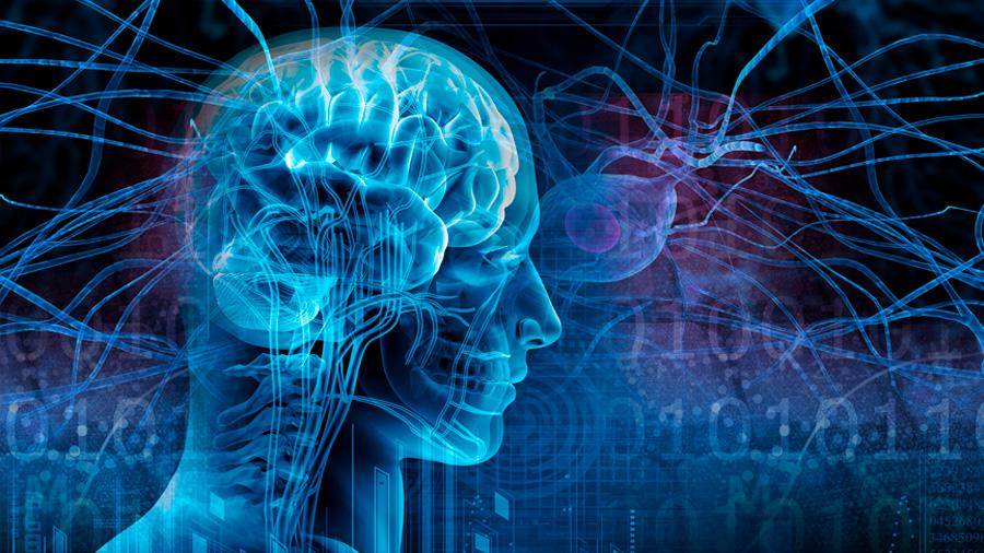 Descubren por qué algunas imágenes provocan convulsiones en personas epilépticas