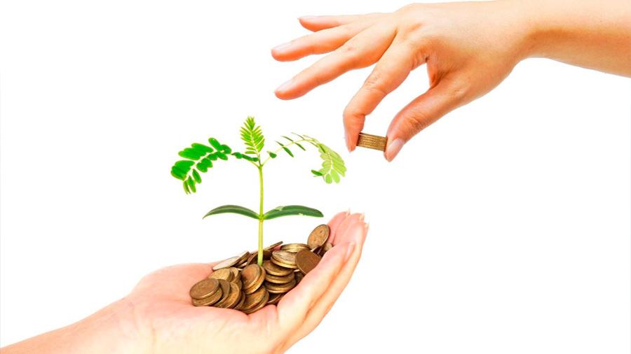 Incentivos fiscales vs. soluciones desde las raíces
