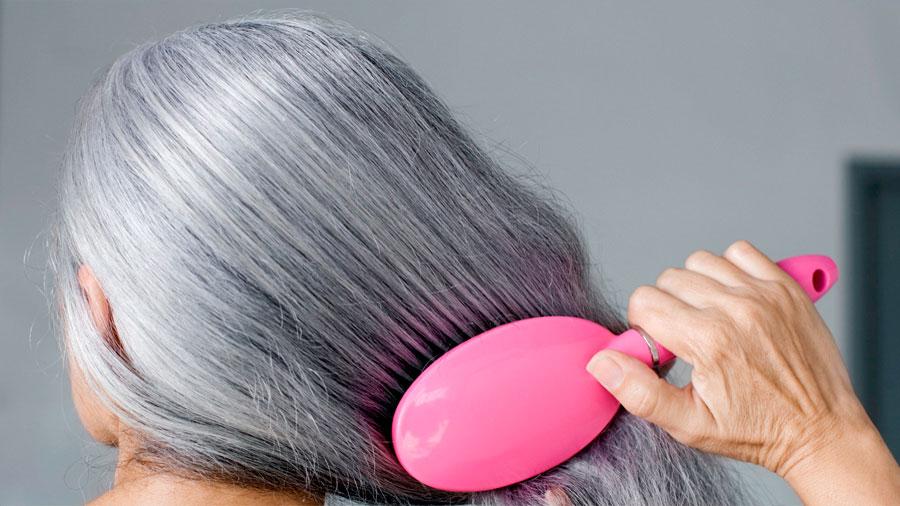 Células responsables del crecimiento de pelo y mecanismo que encanece a éste