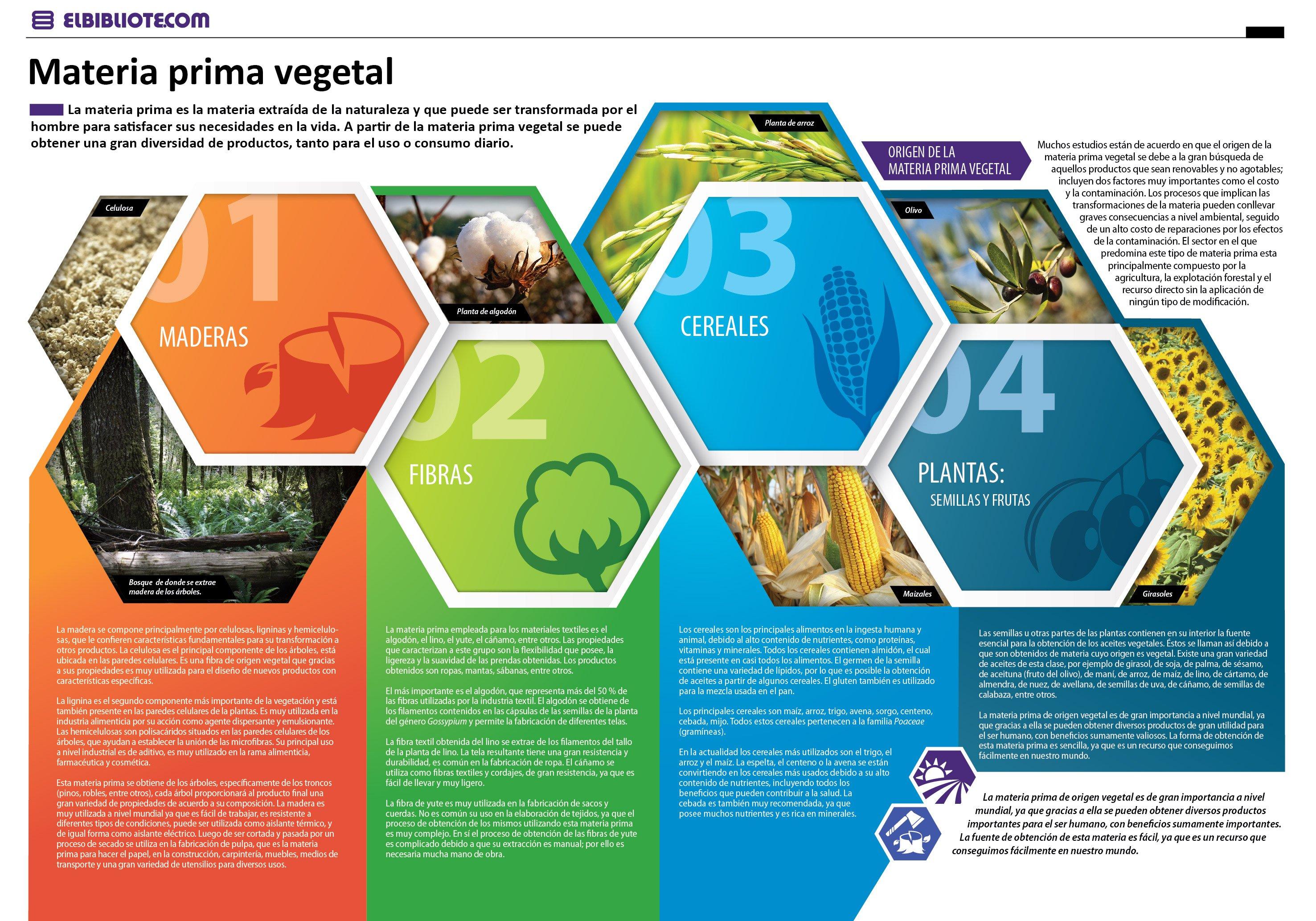 Materia prima vegetal