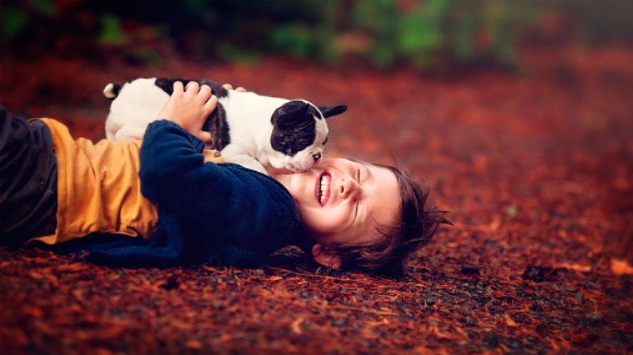 Los perros de compañía ayudan a los niños a reducir sus niveles de estrés