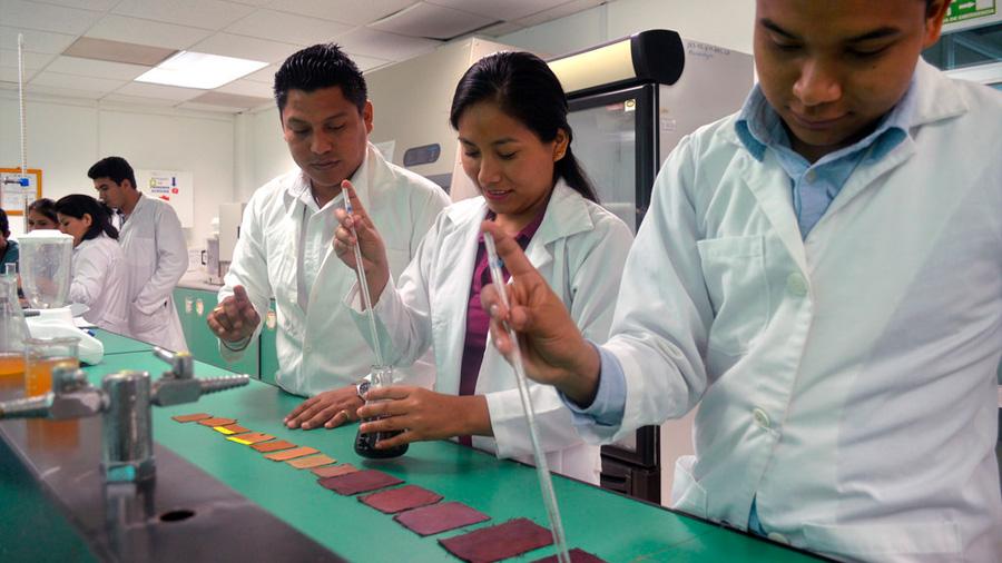 Crean alumnos mexicanos de ingeniería tinta textil a base de cáscara de coco