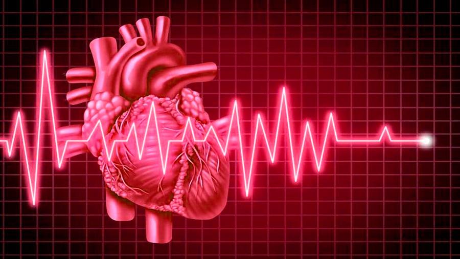 Escuchar los latidos del corazón aumenta la empatía