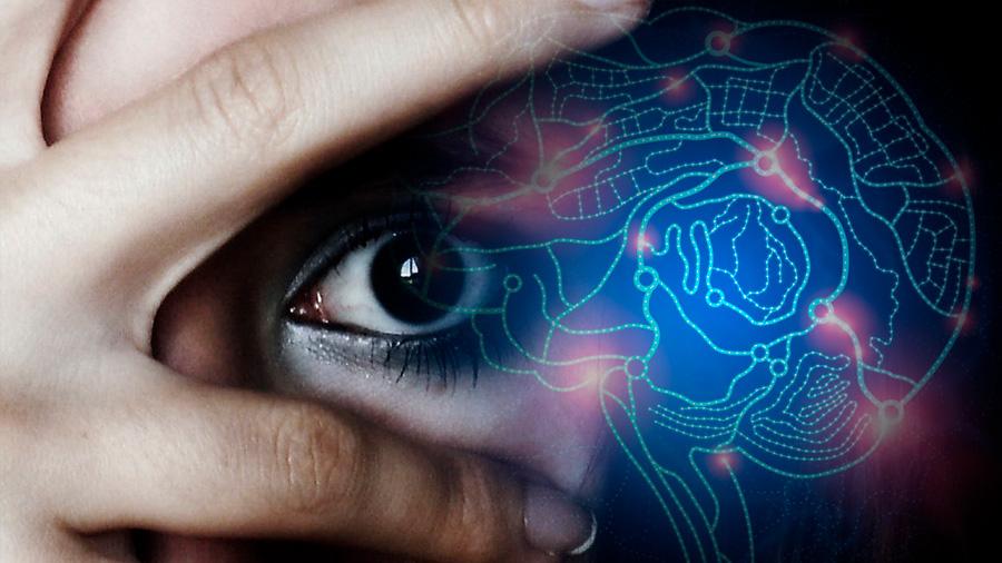¿Cómo codifica el cerebro los recuerdos de miedo?