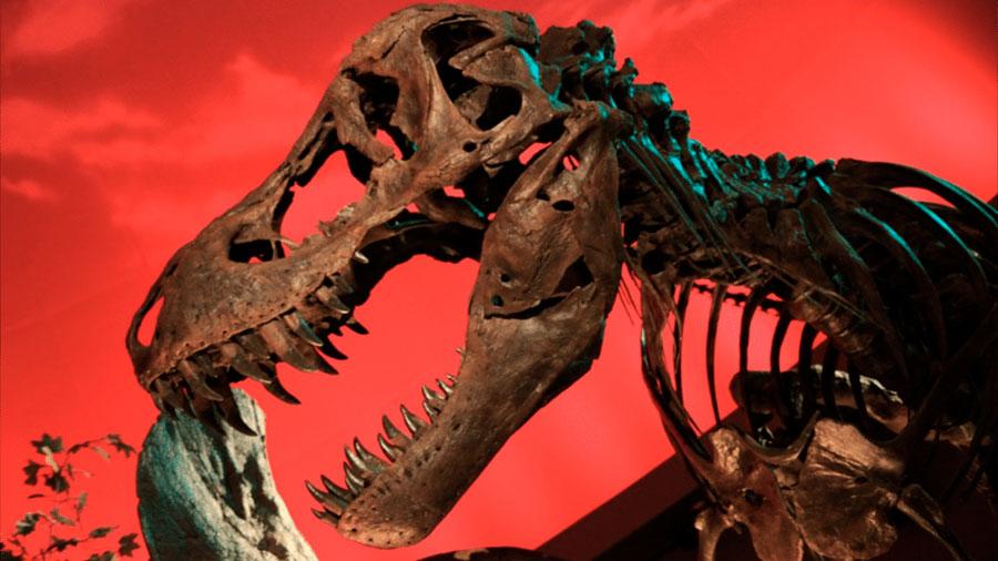 Un 'Parque Jurásico' real es definitivamente imposible