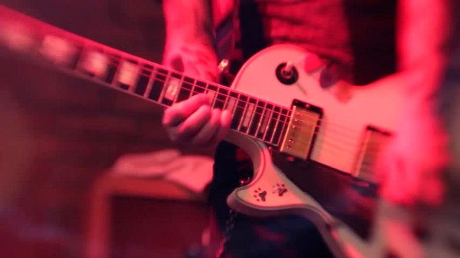 Más que rockstars: cinco músicos que también son científicos