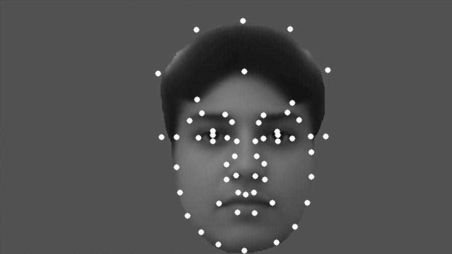 Se recrean rostros a partir de las señales del cerebro de un mono