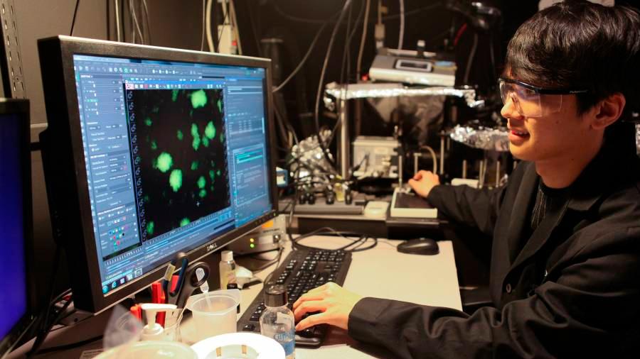 Transmitir órdenes a las bacterias mediante superficies tratadas químicamente