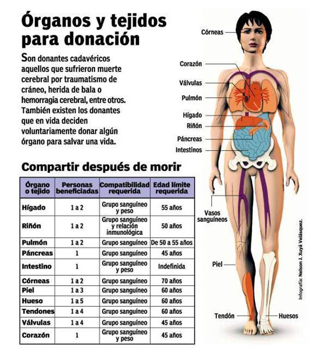 Órganos y tejidos para donación