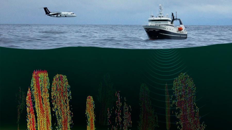 El océano absorbe más CO2 que metano emite a la atmósfera