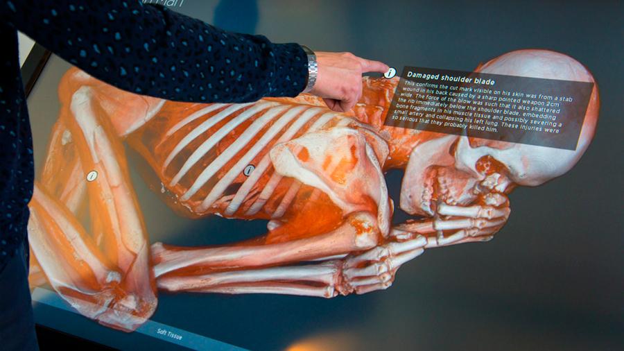 Realizan una autopsia virtual para identificar a una momia