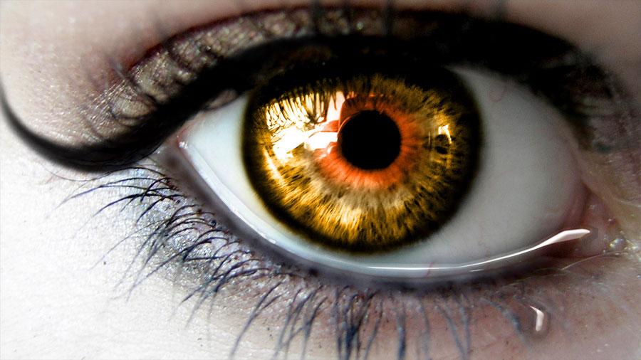Las pupilas también son sensibles a las palabras