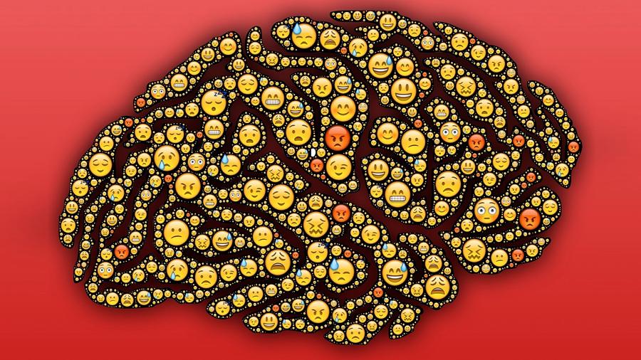 Identificadas las bases cerebrales de las emociones