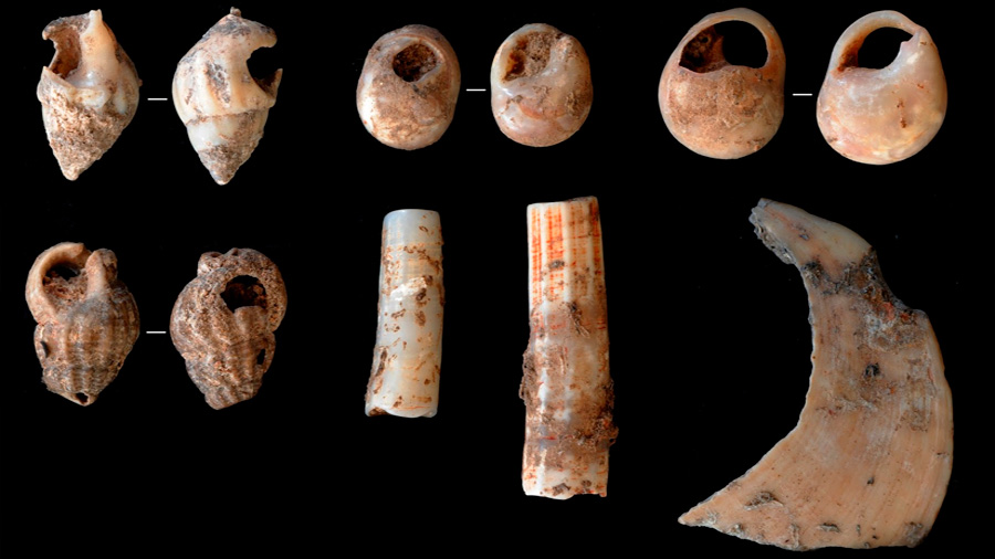 Herramientas, fauna y arte de hace 14.000 años