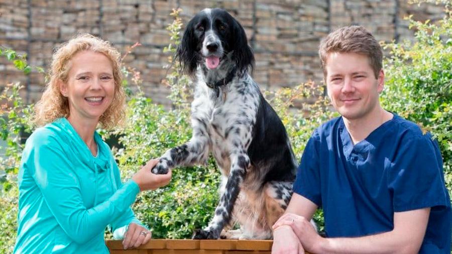 Regeneran la pata de una perra en un proyecto para víctimas de minas antipersona