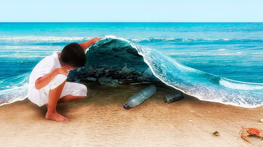 """El """"Zalerion"""", el hongo que es capaz de terminar con la contaminación de plástico en el mar"""