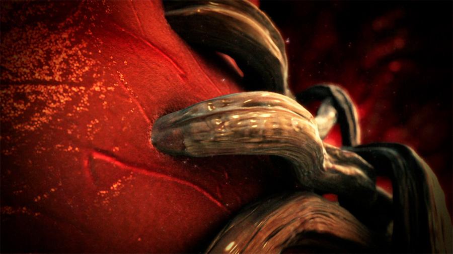 Estos gusanos invaden el cerebro y pueden ser letales. Ahora se están expandiendo por el calentamiento global
