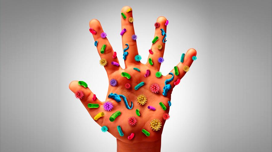 ¿Cuántos microbios viven en sus manos?
