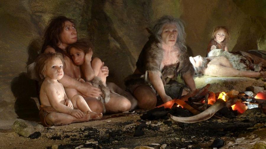"""Los Neandertales eran """"dentistas"""" y tomaba """"medicamentos"""" para aliviar el dolor"""