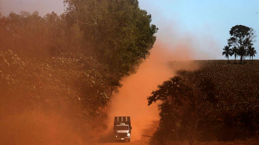 Alerta ambientalistas: la Amazonía está de remate