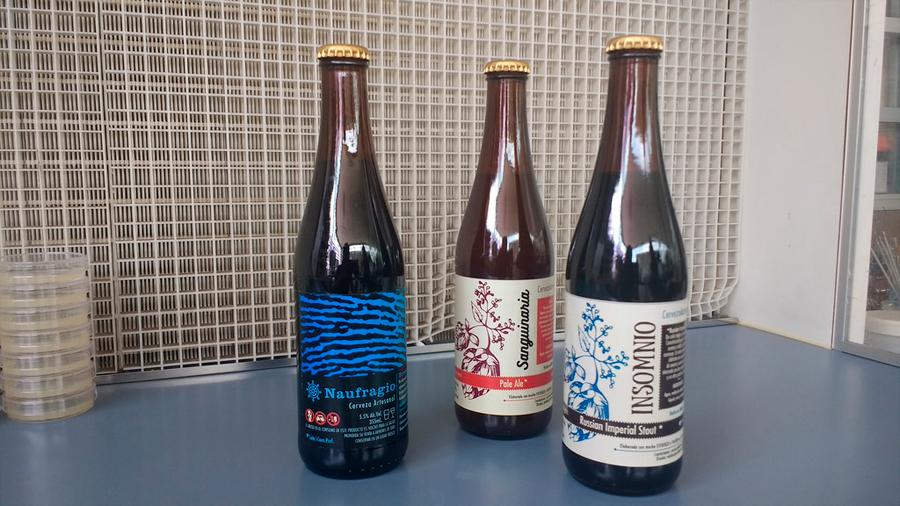 Ingeniosa mexicana genera levadura y comercializa cuatro marcas de cerveza artesanal