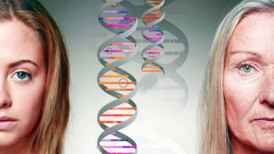 Heredamos de nuestros padres mucho más que los genes
