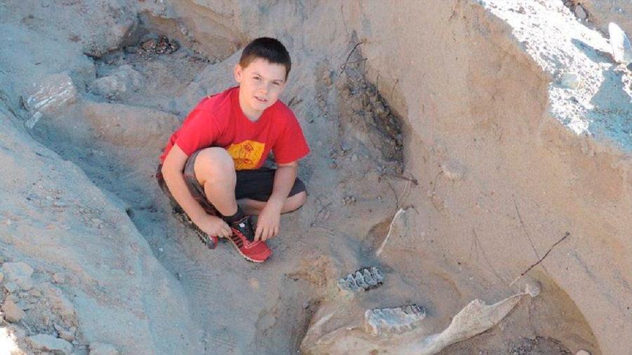 """Niño de 10 años descubrió """"por casualidad"""" un fósil de 1,2 millones de años"""