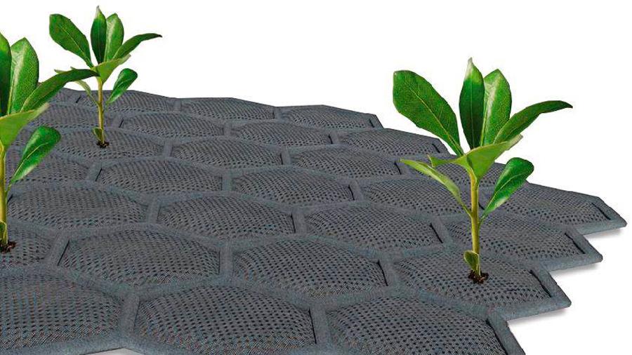 Crean una alfombra inteligente que permite cultivar con orina en México