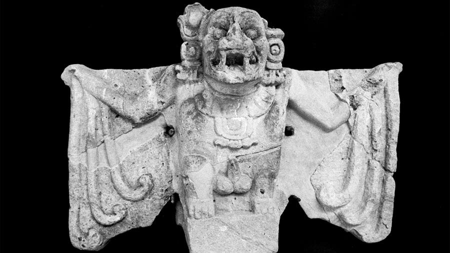 Murciélago: un mártir de la cultura