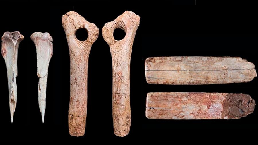 Análisis de huesos humanos del paleolítico muestran evidencias de rituales caníbales