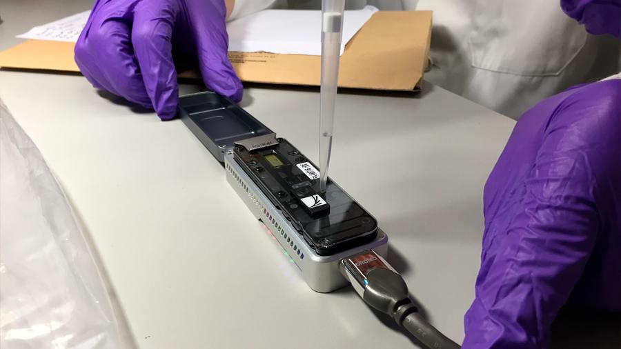 Gracias a un dispositivo portátil, científicos identifican la secuencia genética de plantas en tiempo real