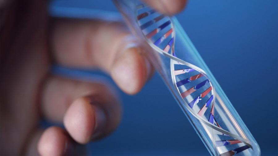 Los blancos se hacen pruebas genéticas de ascendencia y no les gusta el resultado