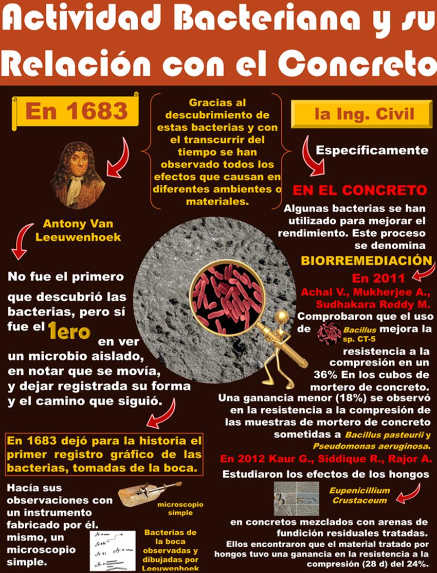 Actividad bacteriana y su relación con el concreto