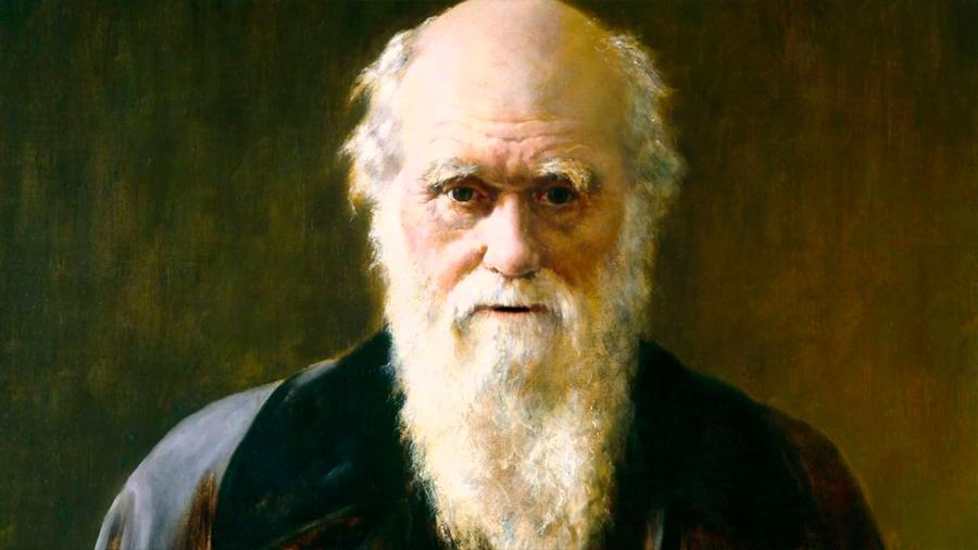 Darwin, el hombre que lo cambió todo con una idea