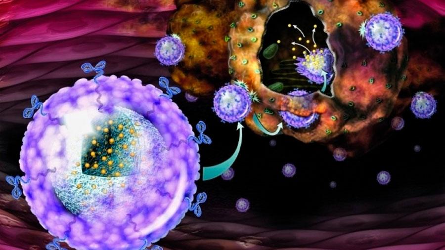 Avance contra el cáncer de mama: investigadores crean nanopartícula que reduce tumores