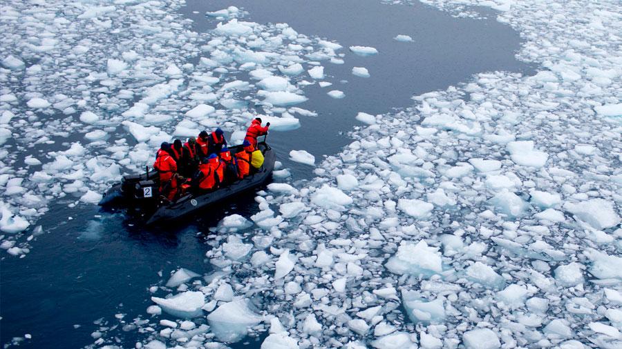 Investigadores calientan un grado las aguas del Antártico y se sorprenden del resultado