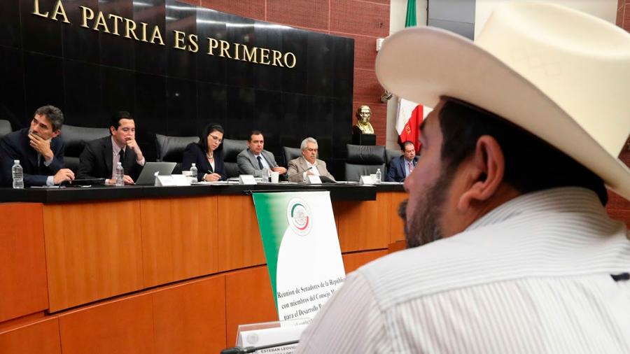 El sector agropecuario es fundamental para el desarrollo del país: senador Ernesto Cordero Arroyo