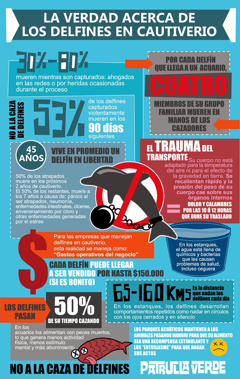 La verdad acerca de los delfines en cautiverio