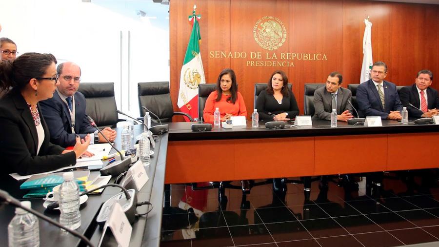 Senado coincide con propuesta ciudadana para reformar el artículo 102 constitucional