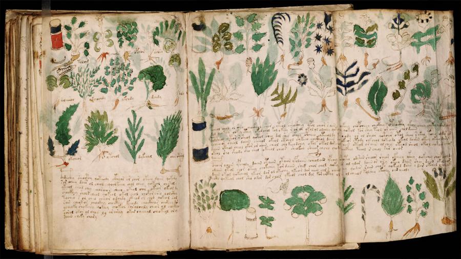 Esta pista podría resolver el enigma del códice Voynich, el manuscrito cifrado más misterioso de la historia