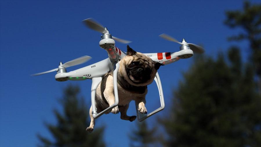 El mundo de los drones
