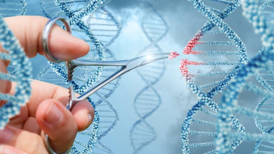 Creador de la técnica de edición genética cree que permitirá curar enfermedades en el futuro