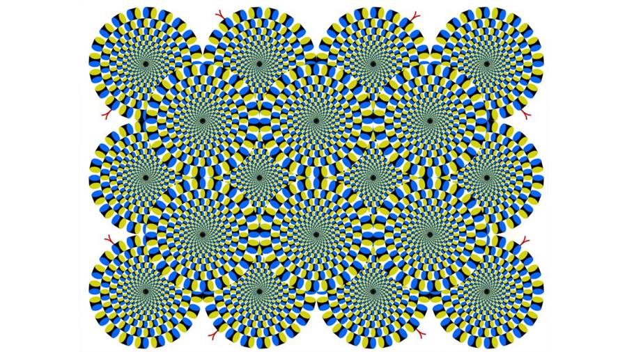 Esta ilusión óptica es tan poderosa que es capaz de engañar tu cerebro y el de tu gato