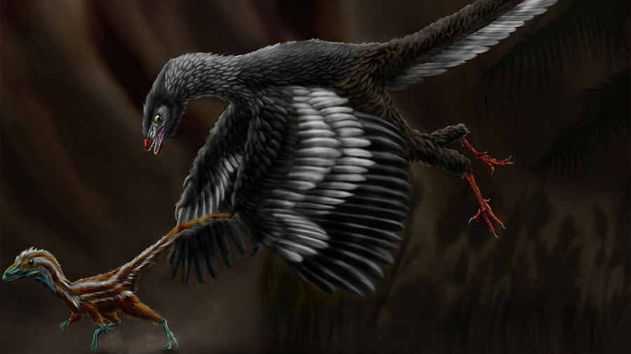 Nuevas evidencias de cómo se transformaron algunas especies de dinosaurios en aves